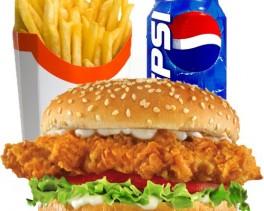 chicken_fillet_burger_meal-500x500